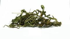 Ταραξάκο - βότανα