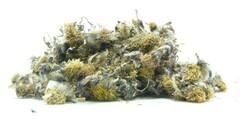 Βήχιο  - βότανα