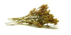 Βαλσαμoχορτο - βότανα