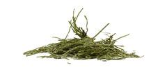 Εκουιζέτο - βότανα