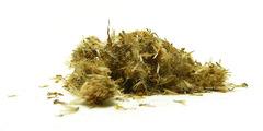 Άρνικα μοντάνα (arnica mexican) - βότανα