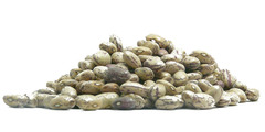 Φασόλια χάντρες - όσπρια